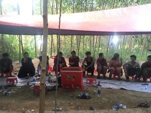 Quảng Nam: Bắt giữ 11 đối tượng đánh bạc ăn tiền ở rừng keo
