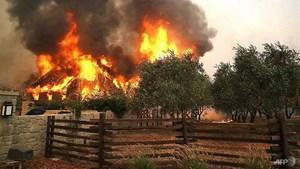 Cháy lớn ở California, hàng nghìn người sơ tán