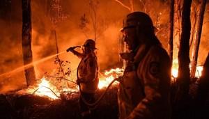 Australia huy động quân đội đối phó hỏa hoạn