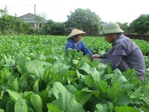Cơ hội phát triển nông nghiệp vùng Tây Bắc