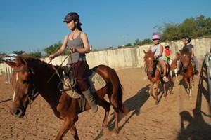 Cưỡi ngựa ở Hà Nội