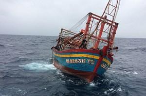 Cứu nạn chín ngư dân trôi dạt cùng tàu cá trên biển