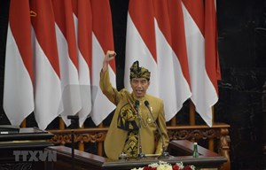 Tổng thống Indonesia công bố địa điểm đặt thủ đô mới