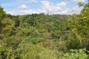 Điều chỉnh quy hoạch sử dụng đất tỉnh Đắk Nông đến 2020