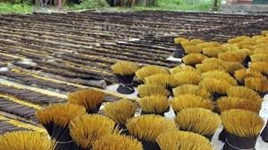 Ấn Độ đột ngột hạn chế nhập khẩu hương nhang: Nguy cơ hàng ngàn lao động thất nghiệp