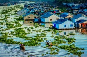 Đồng bằng Sông Cửu Long: Tìm giải pháp biến thách thức thành cơ hội