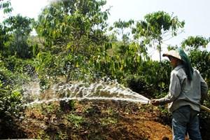 Nước và mùa khô Tây Nguyên