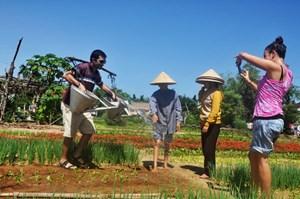 Mô hình du lịch gắn với xây dựng nông thôn mới