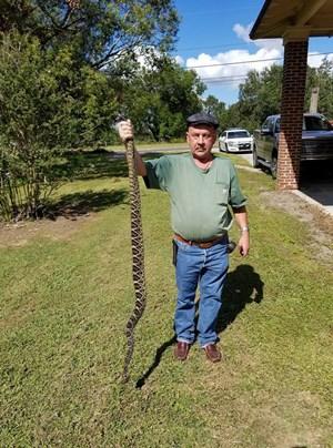 Dùng súng bắn chết rắn độc