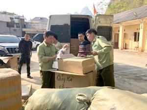 Lạng Sơn: Bắt giữ hơn 37.000 khẩu trang y tế không rõ nguồn gốc