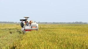 Thanh Ba (Phú Thọ): Dồn đổi ruộng đất, xây dựng nông thôn mới