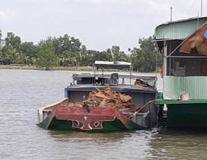 Bắt giữ nhiều xà lan khai thác đất trái phép lòng sông Hậu
