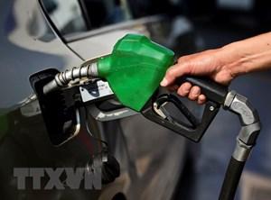 Giá dầu thô trên thị trường châu Á lại quay đầu đi lên