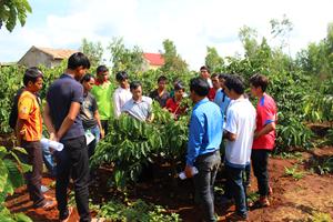 Gia Lai:Cách làm hay của Hội Nông dân huyện Đak Đoa