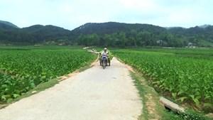 Hà Nam: Phấn đấu 2 huyện về đích nông thôn mới trong năm 2017