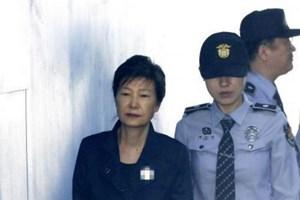 Hàn Quốc dừng xét xử cựu tổng thống Park Geun-hye