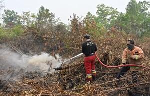 Indonesia triển khai nhiều biện pháp đối phó với khói bụi độc hại