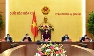 Quốc hội khóa XV sẽ có 200 đại biểu chuyên trách