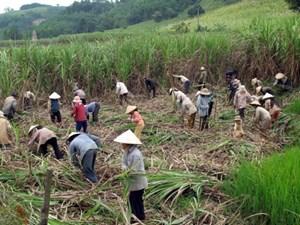 Nỗ lực giảm nghèo ở một huyện miền núi