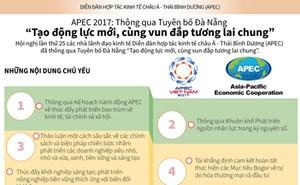 [Infographic] Những nội dung chính của Tuyên bố Đà Nẵng