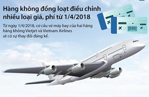 [Infographics] Các hãng hàng không điều chỉnh nhiều loại giá, phí