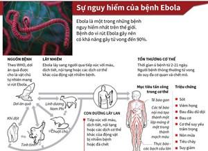 [Infographics] Ebola - một trong những bệnh nguy hiểm nhất thế giới