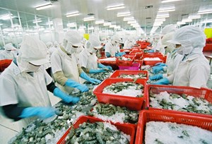 [Infographics] Năm 2018 xuất khẩu thủy sản có thể đạt trên 8,5 tỷ USD