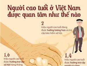 [Infographics] Người cao tuổi ở Việt Nam đang được quan tâm như thế nào?