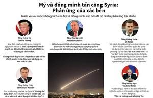 [Infographics] Phản ứng liên quan việc Mỹ và đồng minh tấn công Syria