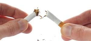 [Infographics] Thuốc lá gây tác hại trên cơ thể con người như thế nào?