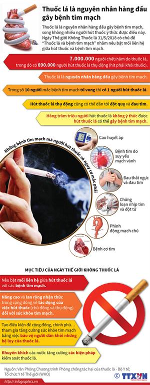 [Infographics] Thuốc lá là nguyên nhân hàng đầu gây bệnh tim mạch