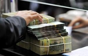Không sử dụng Ngân sách Nhà nước để xử lý các tổ chức tín dụng yếu kém