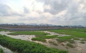 Dự án khu đô thị mới Kim Bình (Hà Nam): Chủ đầu tư bán 'lúa non', khách hàng chịu rủi ro