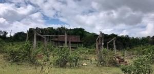 Hoang tàn khu tái định cư