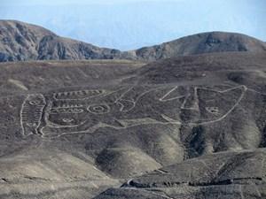 Kỳ lạ 20 hình vẽ khổng lồ trên sa mạc của Peru
