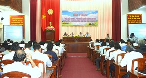 Liên kết để thúc đẩy chuỗi giá trị lúa gạo chất lượng cao