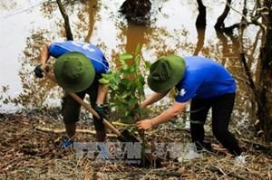 Long An: Trồng 7.000 cây bản địa ở Khu bảo tồn Láng Sen