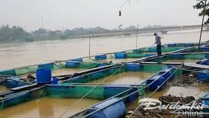 Lũ lớn ở Thừa Thiên - Huế: 5 người chết, 3 người mất tích, trên 17.000 ngôi nhà bị ngập