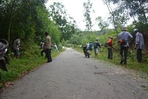 Mặt trận phát động ra quân phát quang cây cối trên các tuyến đường