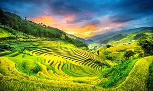 Mù Cang Chải trong top 10 vùng núi đẹp nhất thế giới
