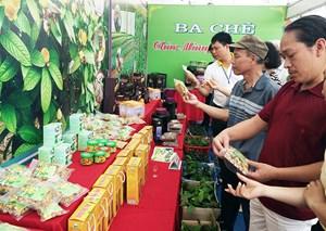 Nâng cao giá trị, tạo thương hiệu cho sản phẩm Việt