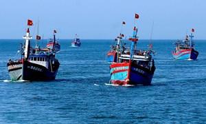 Phú Yên: Vận động ngư dân vươn khơi bám biển