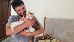 'Người mèo' Syria chuyên chăm sóc chó, mèo bị bỏ rơi
