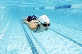 Những quy định mới về môn karate, bóng bàn và bơi lặn