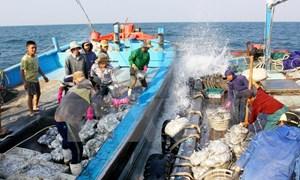 Nỗ lực gỡ bỏ thẻ vàng cho hải sản
