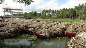 Nước sông đen đặc, bốc mùi vì nước thải của nhà máy mía đường Trà Vinh