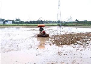 Nhiều địa phương cơ bản hoàn thành kế hoạch lấy nước cho vụ Đông Xuân