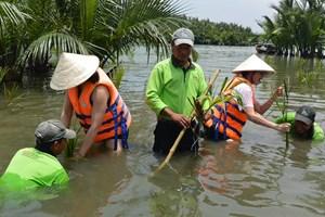 Phục hồi rừng dừa nước