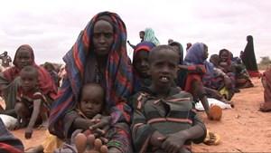 Quan ngại về an ninh lương thực tại khu vực châu Phi