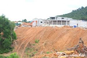 Quảng Nam: Lo lắng vì đất ruộng bị bồi lấp